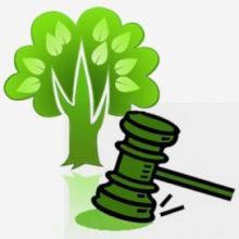 Código Florestal constitucional